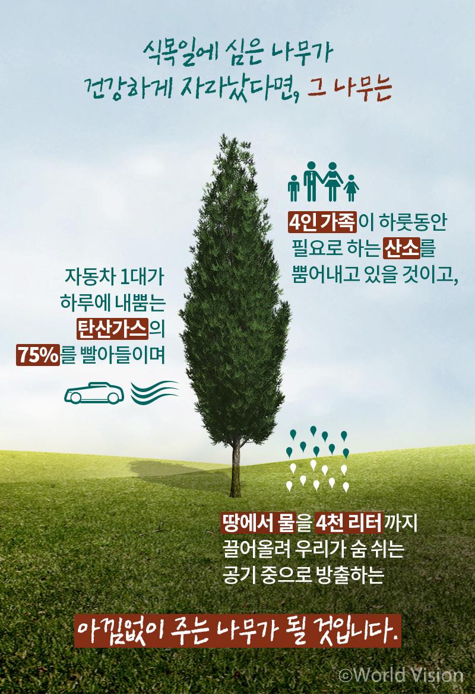 • 크고 건강한 나무 한 그루 식목일에 심은 나무가 건강하게 자라났다면, 그 나무는 ○ 4인 가족이 하룻동안 필요로 하는 산소를 뿜어내고 있을 것이고, ○ 자동차 1대가 하루에 내뿜는 탄산가스의 75%를 빨아들이며, ○ 땅에서 물을 4천 리터까지 끌어올려 우리가 숨 쉬는 공기 중으로 방출하는 아낌없이 주는 나무가 될 것입니다.