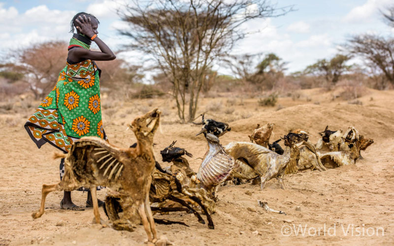 가뭄으로 자욱한 먼지. 길 양옆으로 나무가 아닌 동물들의 사체가 늘어서 있습니다. 뼛속까지 메마른 동물들은 차라리 나무장작처럼 보입니다.