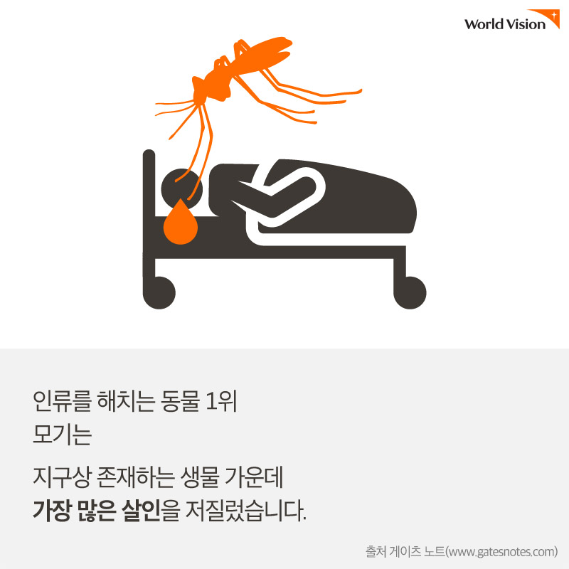 인류를 해치는 동물 1위 모기는 지구상 존재하는 생물 가운데 가장 많은 살인을 저질렀습니다. 출처 게이츠 노트(www.gatesnotes.com)