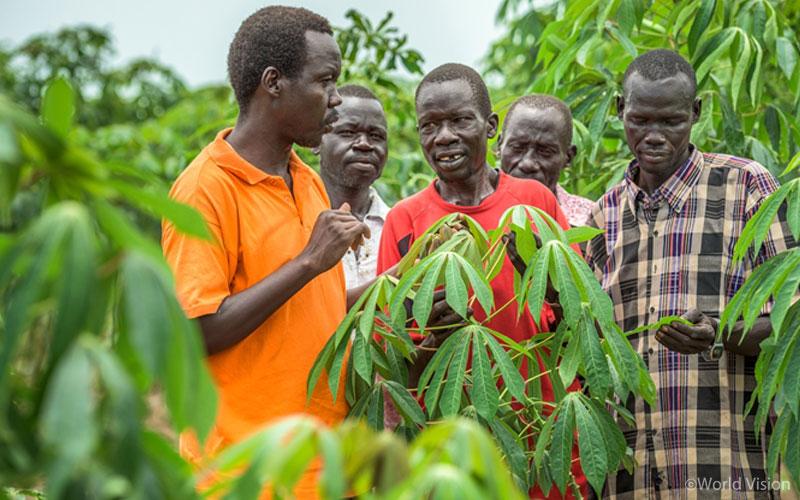 카사바 농장을 방문해 지역주민들과 함께 농법을 의논하고 있는 콘디모