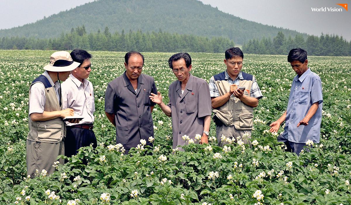 감자꽃 사업